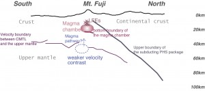 図3 富士山の地下構造の解釈図 富士山の下には地殻が分厚いIBM弧が衝突し、沈み込んでいます。富士山の地下約10-15kmの深さでは火山性の低周波地震が発生しており、その下にあるマグマ溜まりの下面は約25-30kmにあると考えることができます。また、IBM弧の上部マントルの上面は富士山下で約50kmの深さにあり、富士山直下では速度の境界があいまいになっていることがわかりました。深部で発生したマグマはこの領域を通過して、浅い部分に上昇している可能性があります。