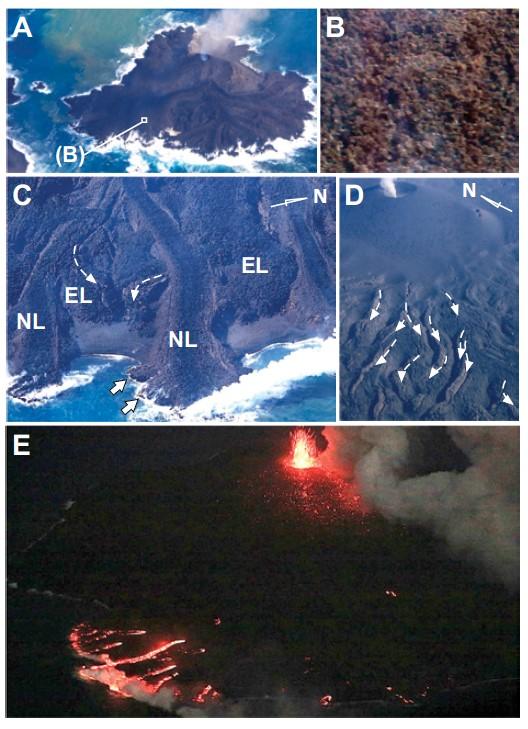 図2 航空機から観察した西之島噴火の様子.A: 成長する新島(2013年12月20日).島の長軸は約500 m.B: クリンカーに覆われた溶岩流表面の拡大.写真の幅は約15 m.C: 海に流入する溶岩流先端部(2015年3月4日).溶岩先端の幅は約50 m.NL—分岐が開始している新しい溶岩ローブ.EL—亀裂が発達し始めているより早い時期の溶岩ローブ.D: 膨張により亀裂が発達した溶岩ローブ群(2014年11月13日).ローブ群の幅は約200 m.E: 赤熱する溶岩流先端部(2015年3月4日).熱い溶岩がローブ先端に供給され成長していることを示す.A,Bは毎日新聞,C–Eは朝日新聞の協力による.