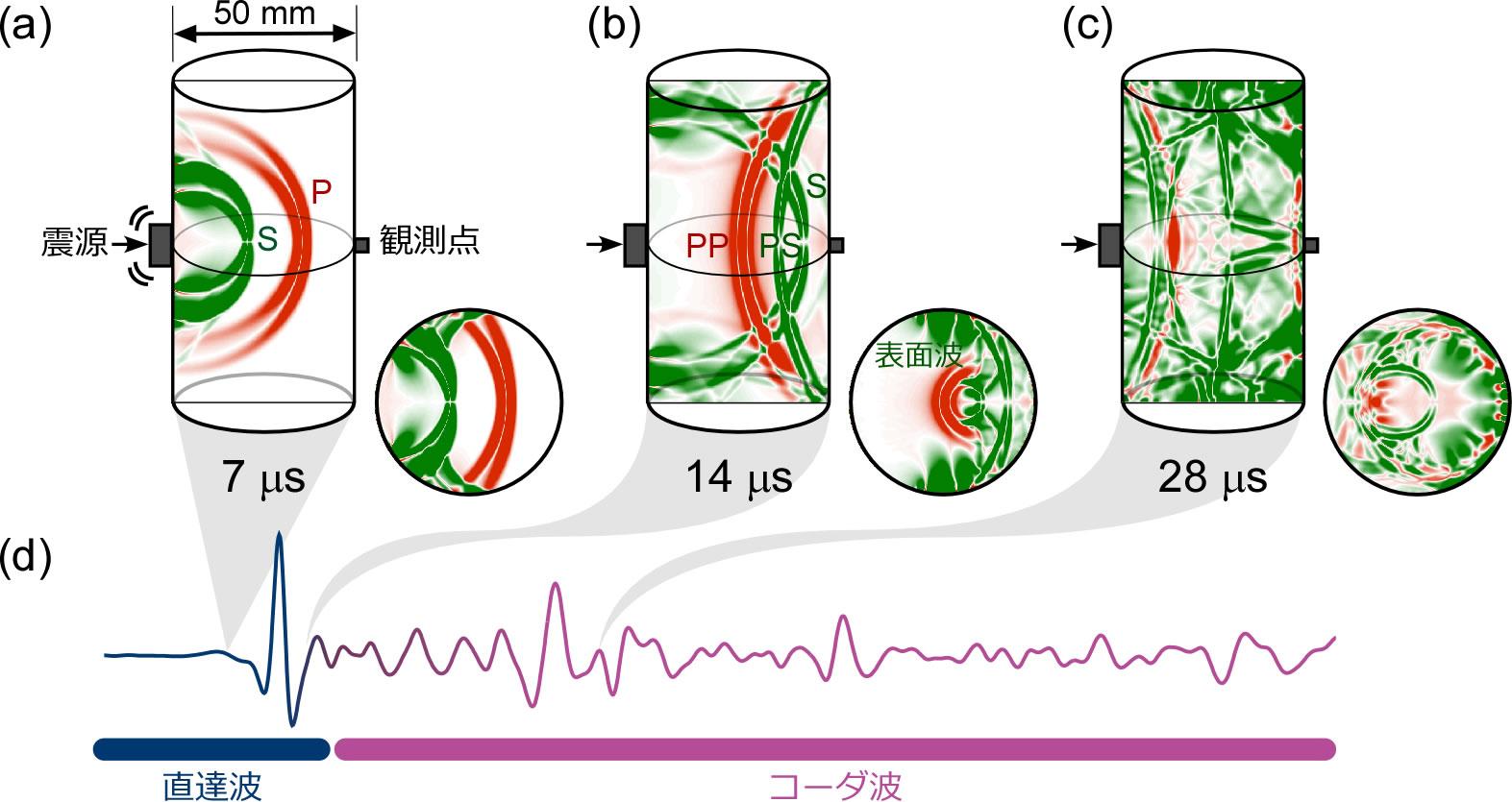 三次元数値計算による実験試料の幾何形状が波動場に及ぼす影響の検討